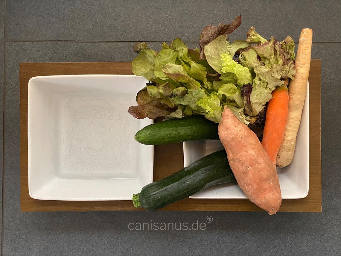 Gemüse für den Hund – Was man bei der Fütterung beachten sollte!